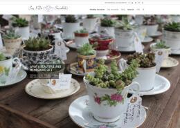 sayidosucculentswebsitescreenshot
